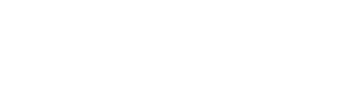 Everton International Academy Logo